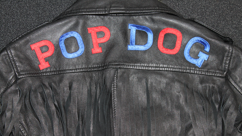 pop dog embroidery